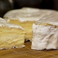 AOP Camembert cheese in Normandy